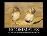 ROOMMATES-LikeLikeLikeLikeLike