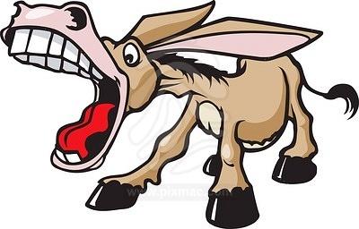 braying-donkey