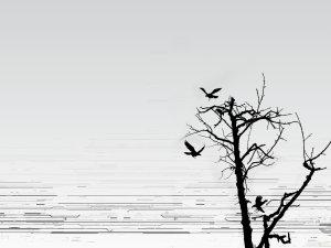 birds-on-the-tree